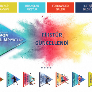 Türk Telekom-İnteraktif TTSO Sistemi